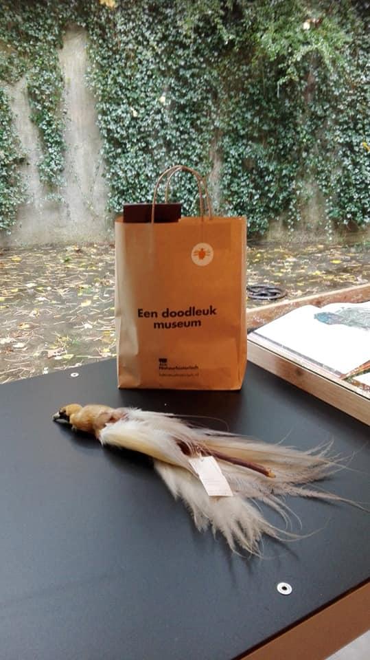 Papieren tasje van Natuurhistorisch museum Rotterdam